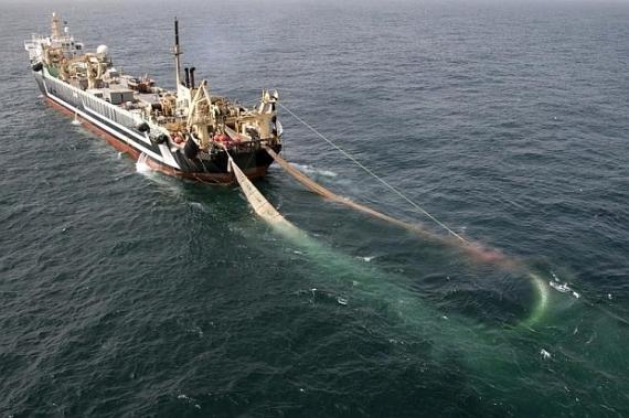 [Obrazek: trawler-2012-08.jpg]