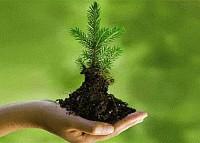 Ekologiczna postawa osobista