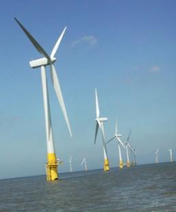 Farma wiatrowa w estuarium Tamizy
