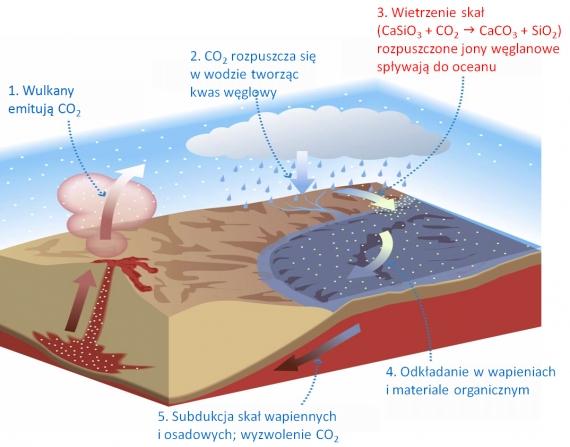 Datowanie węglowe skał